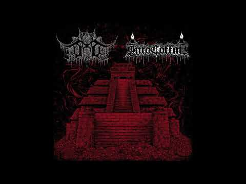 Devoid Of Thought / Into Coffin (Full Split-EP) (2019)