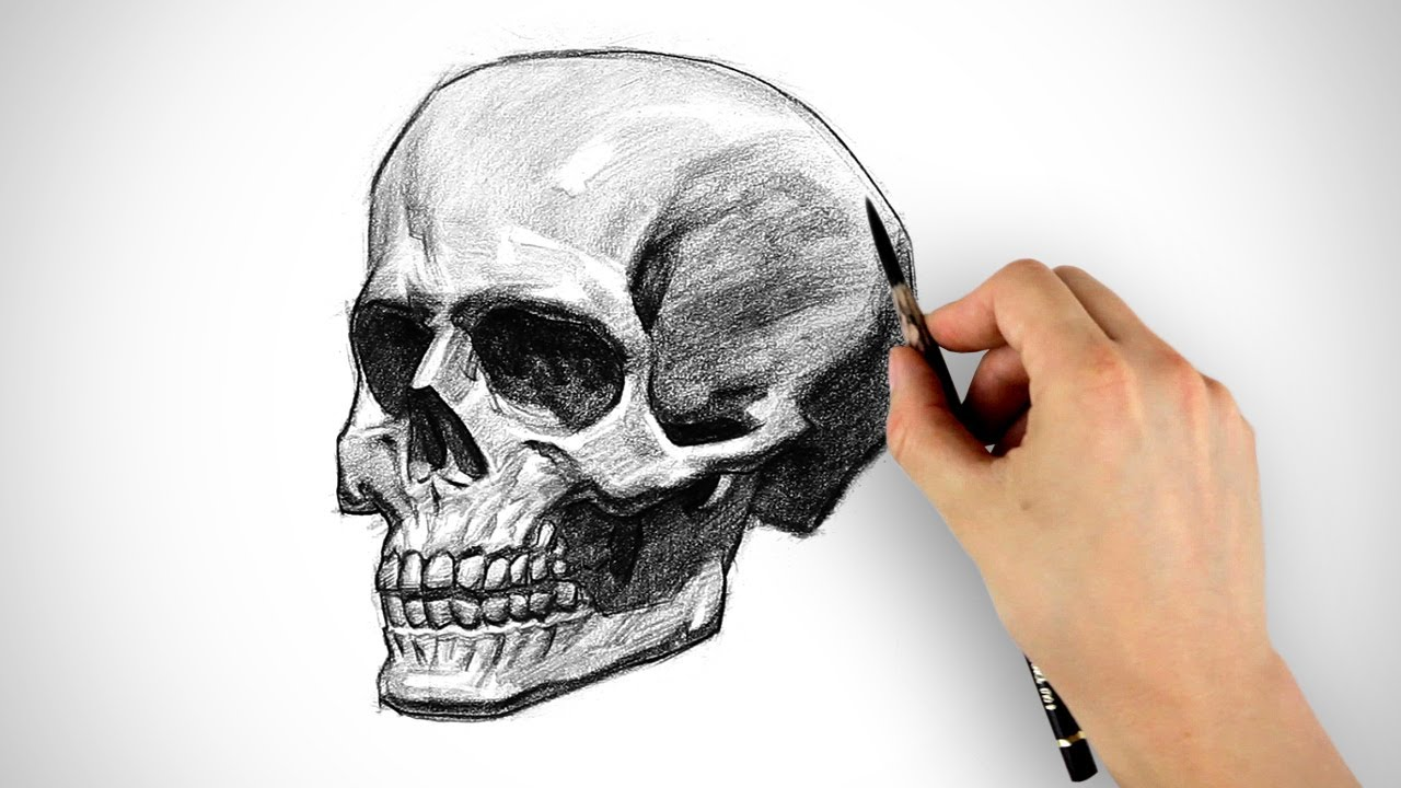 Draw a Skull - Halloween Special - YouTube