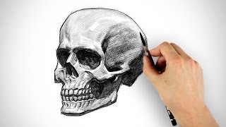 Draw a Skull - Halloween Special(Don't miss new tutorials, signup for my mailing list - http://www.proko.com Portrait Drawing Fundamentals - http://www.proko.com/dvd1 Skelly comes by the ..., 2013-10-31T07:36:07.000Z)