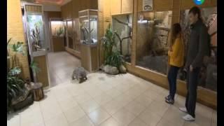 Помощница по уходу за животными в зоопарке! Рубрика Проверено на себе!