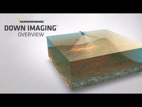 What Is Down Imaging And How To Read It | Humminbird
