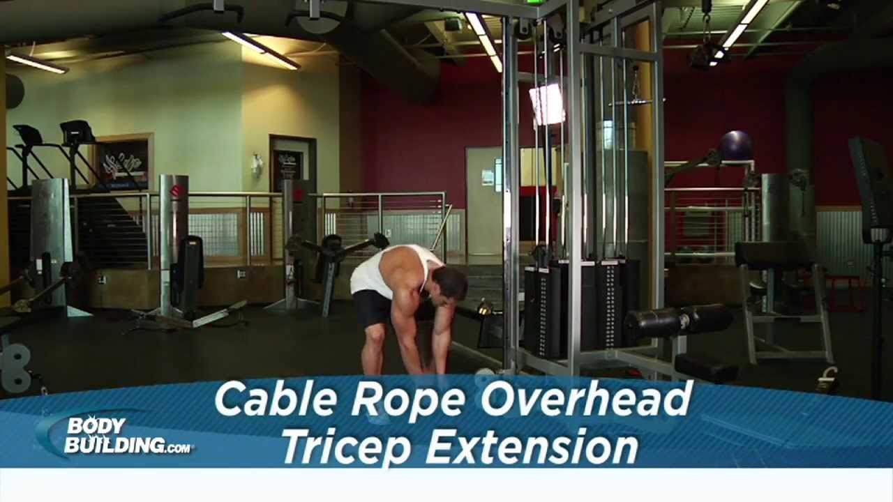 cable tricep extension muscles worked