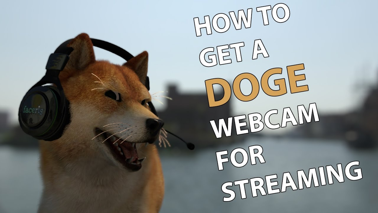 How to Get A Doge Webcam for Streaming - Like TheOneManny
