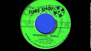 Lloyd Williams - Wonderful World