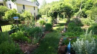 Meadowsweet Gardens Summer 2011