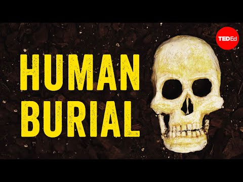 What happens to our bodies after we die? - Farnaz Khatibi Jafari