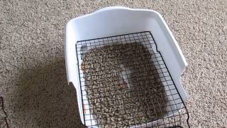 Rabbit Litter Box-custom-made/ Diy Scatterless With Grid/grate Under $5