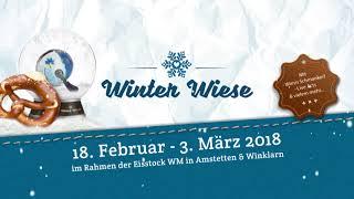 Winter Wiese 2018