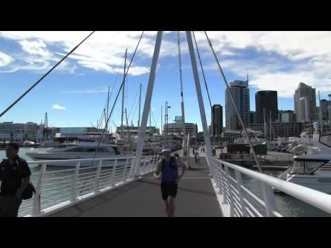 Auckland Harbour / Viaduct Tour