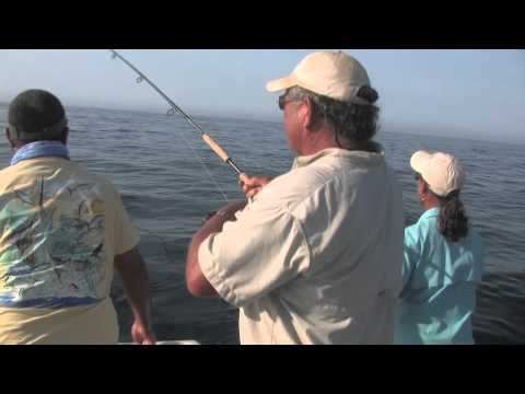 East Cape Fly Fishing