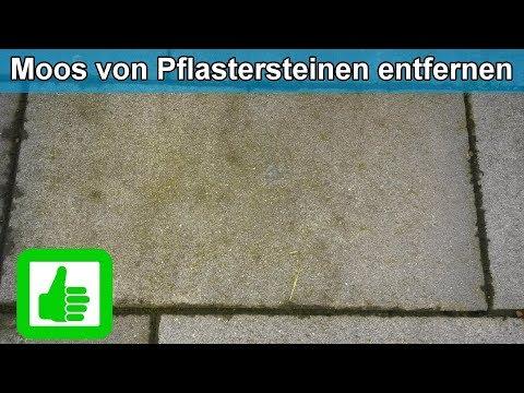 Prächtig Moos & Grünbelag von Pflastersteinen ( Terrasse ) entfernen @KX_92