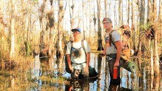 2 Men Make it Out Alive After Encountering Alligators During Everglades Hike