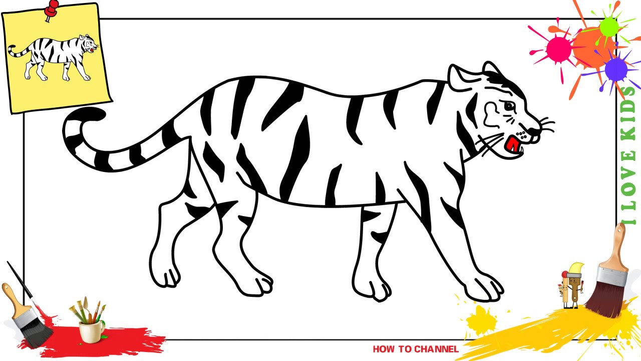 How to draw a tiger (white) EASY & SLOWLY step by step for ...