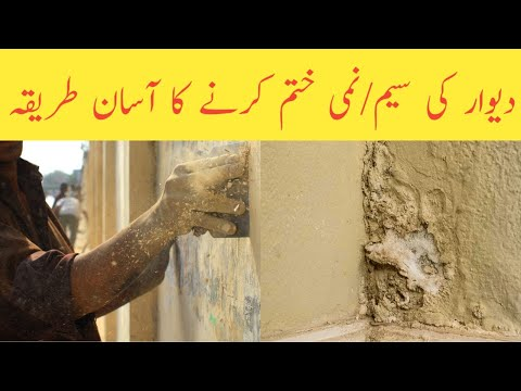 Best Solution Of Damp Wall Problem Pakistan || House Construction & Maintenance