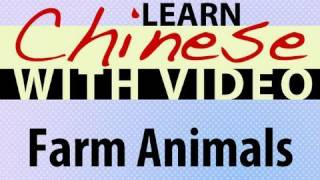 Learn Chinese with Video - Farm Animals