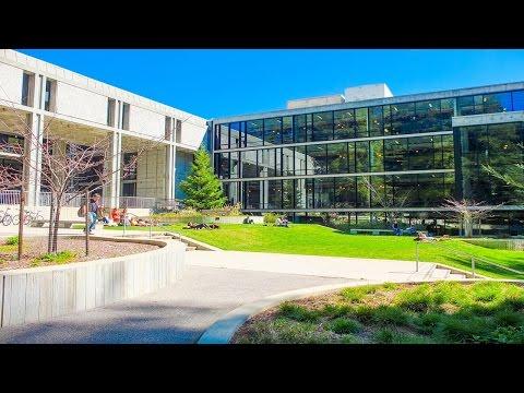 Short review of University of California - Santa Cruz