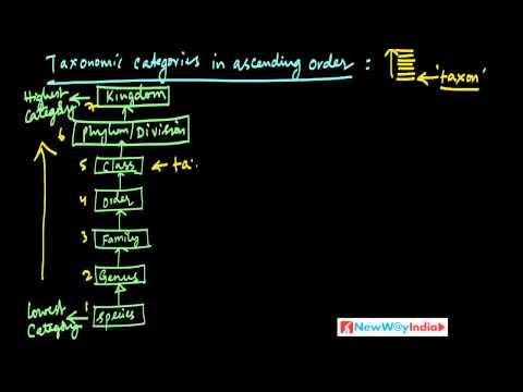 CBSE Class 11 - Biology Lessons - 007 - Taxonomic Categories Part 01