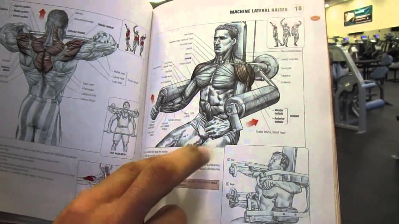 كتاب التشريح العضلي مترجم