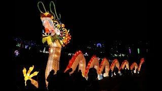 Фестиваль гигантских китайских фонарей Giant Chinese Lantern Festival