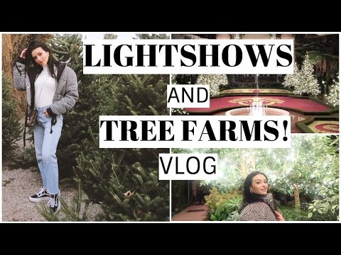 British Accents & Lightshows w Friends!   Vlogmas 3