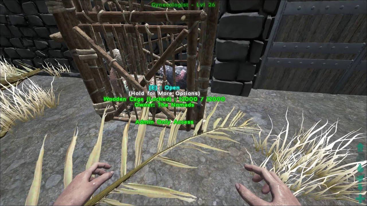 Ark Survival Evolved Wooden Cage
