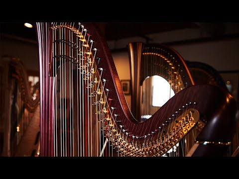 The Chicago Harp That Rules the World