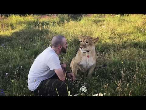 знакомства abik львов