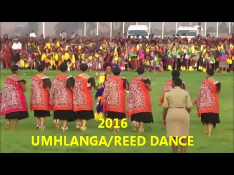 Umhlanga/Reed Dance 2016 Swaziland Vlog| Swazi in South Africa YouTuber| 05 Sept 2016