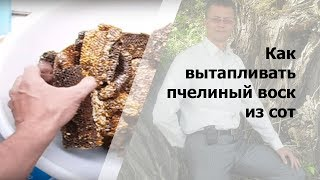 Как вытапливать пчелиный воск из сот