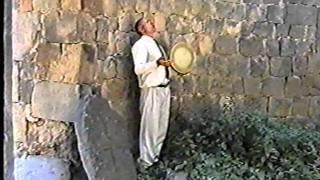 Misha Baghdasaryan Mush Van gervac Hayastan