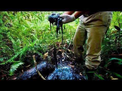 Papantonio: American Courts Greenlight Chevron's Destruction
