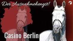 Casino Berlin 🤩 | Sosath's Ausnahmehengst im Portrait |ClipMyHorse.TV Zuchthighlights