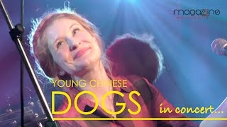 Young Chinese Dogs live in concert
