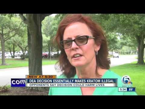 26725 rizne Mensch WPTV DEA decision essentially makes kratom illegal