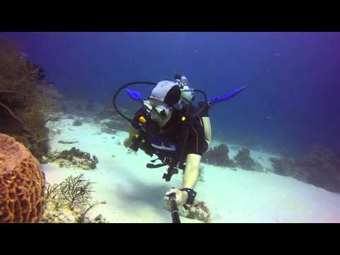 Dive with very strong current in Komodo, Indonesia