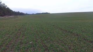 CORTEVA AGRISCIENCE™ - ефективната  растителната защита в житни