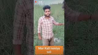 Mar Kali noniya toli dipak diwana