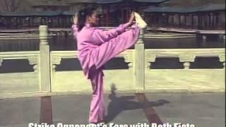Tai Chi - Yang Style 24 Movements