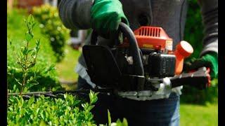 Poda y pinzamiento de arbustos - Bricomanía Mp3