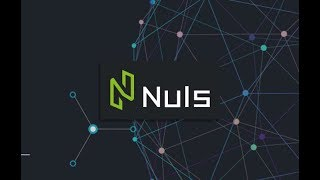 NULS Coin +26% Profit in 24hrs!