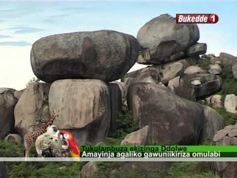Uganda zaabu - YouTube