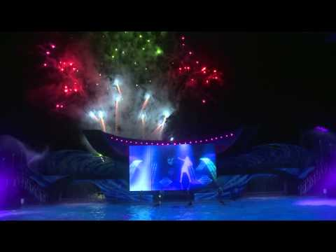 Celebrate the Fourth of July at SeaWorld Orlando