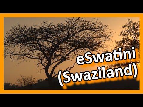 Swaziland - Mlilwane Wildlife Sanctuary