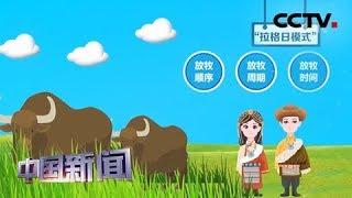 [中国新闻] 聚力脱贫攻坚 青海黄南:高原草绿见牛羊 生态恢复与脱贫并进 | CCTV中文国际