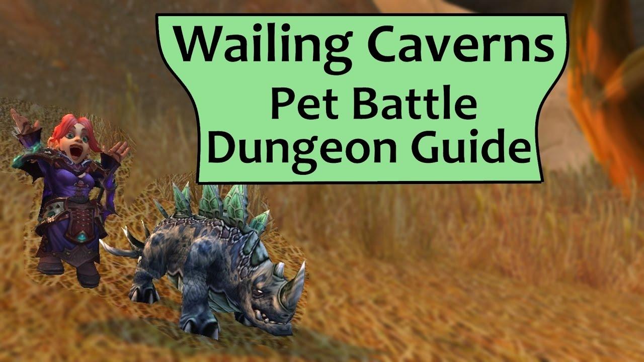 Feckless Leader: 1-25 Beginner Pet Leveling Guide
