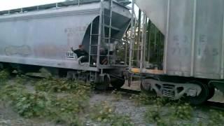 Tren pasando por san blas sinaloa