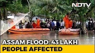 43 Lakh Affected, 95% Of Kaziranga Park Flooded In Assam