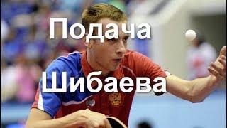 подача Шибаева