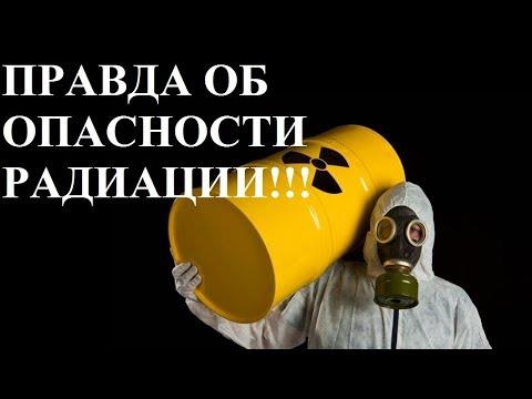 Вопрос: Правда, что тараканам не страшна радиация Почему?