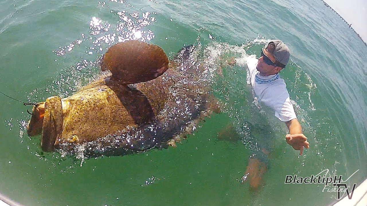 Huge Florida Keys Grouper! - YouTube